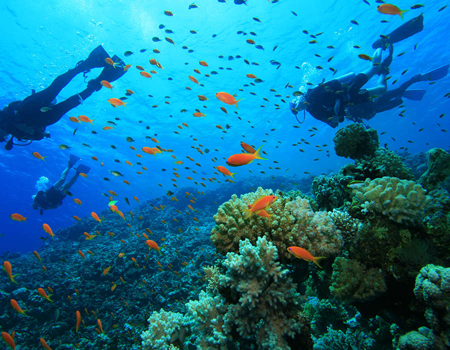 viajes a cabo verde deportes acuaticos buceos