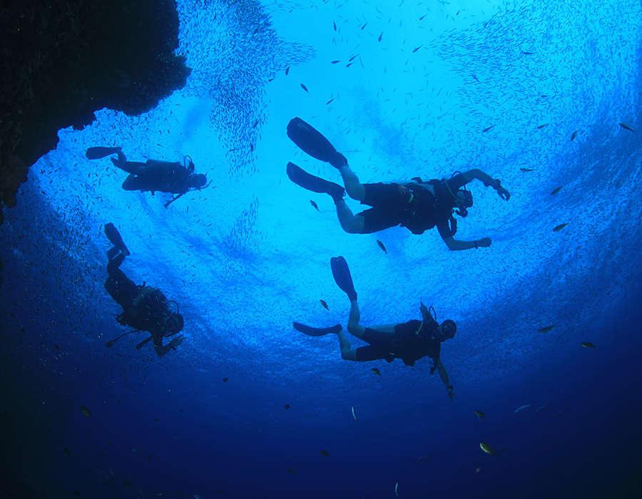 viajes a cabo verde deportes acuaticos submarinismo