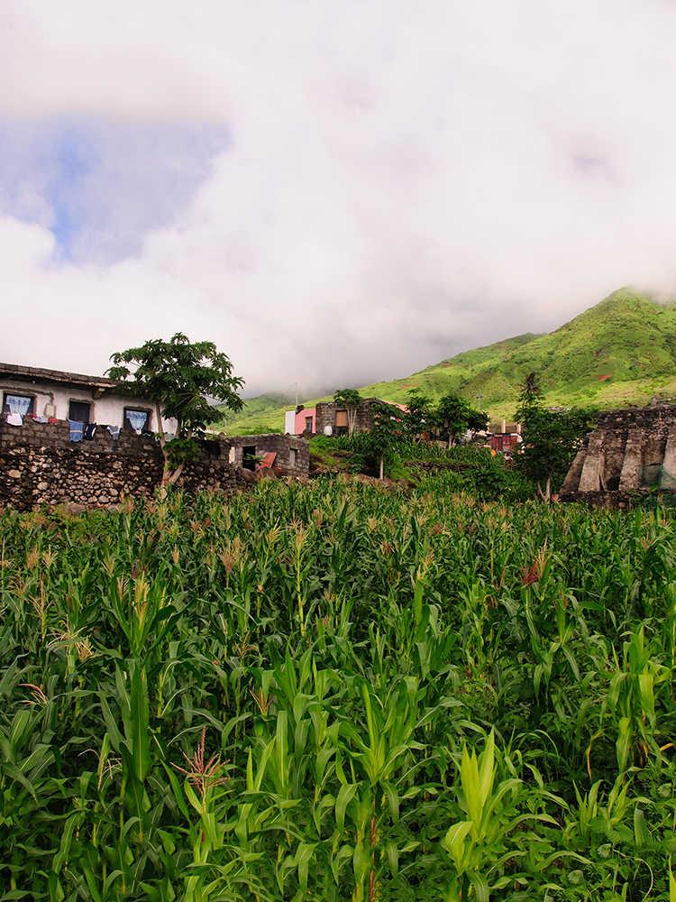 islas de sotavento valle rural plantaciones