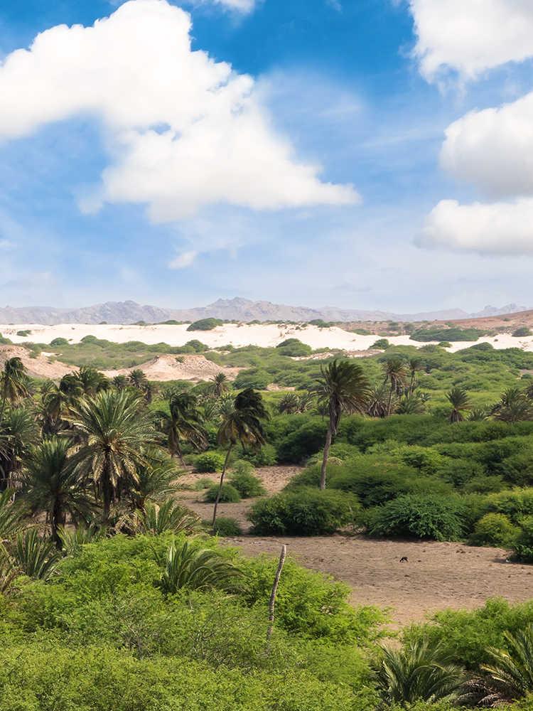 playas de cabo verde oasis de Viana