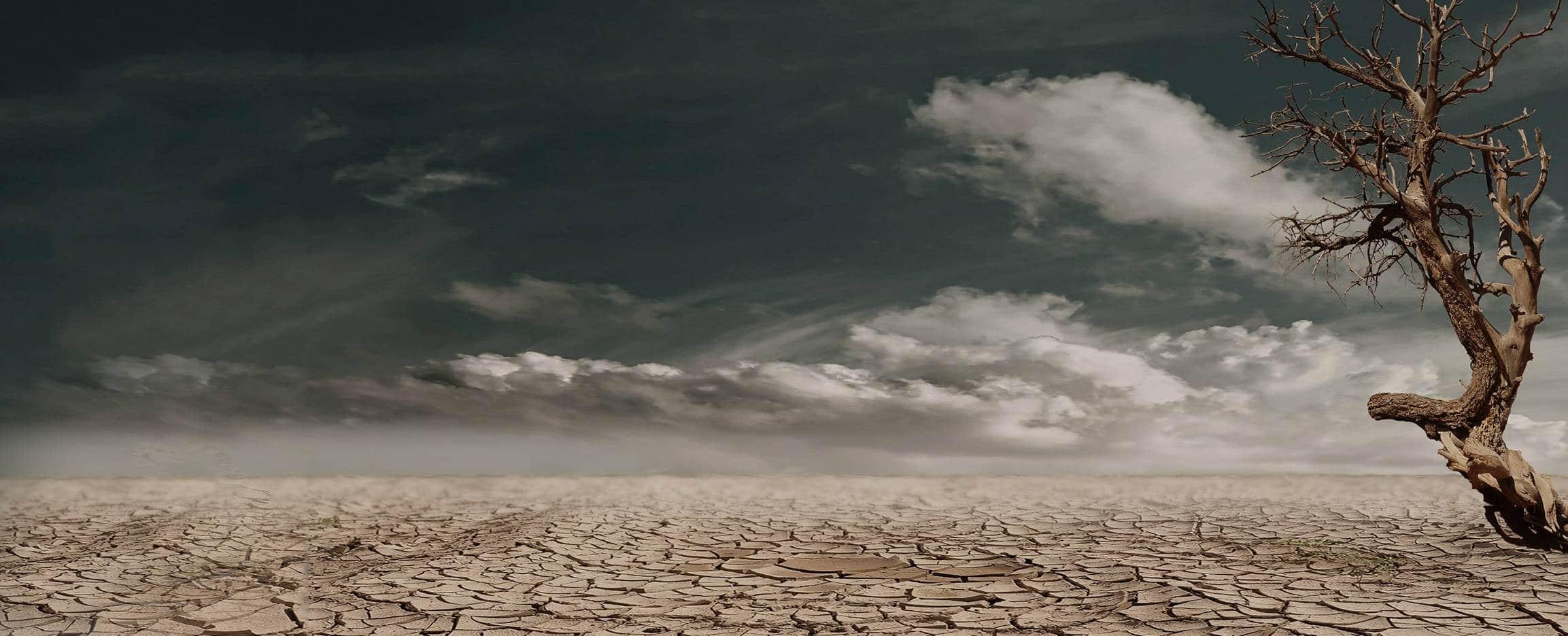 los efectos del cambio climatico en el turismo llanura seca