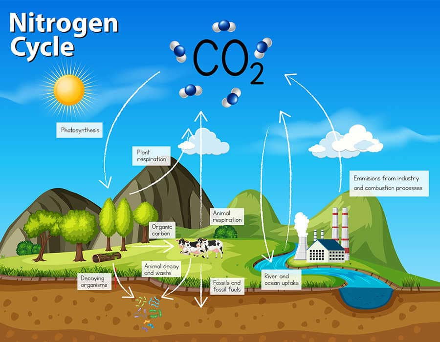 emisiones de co2 infografía
