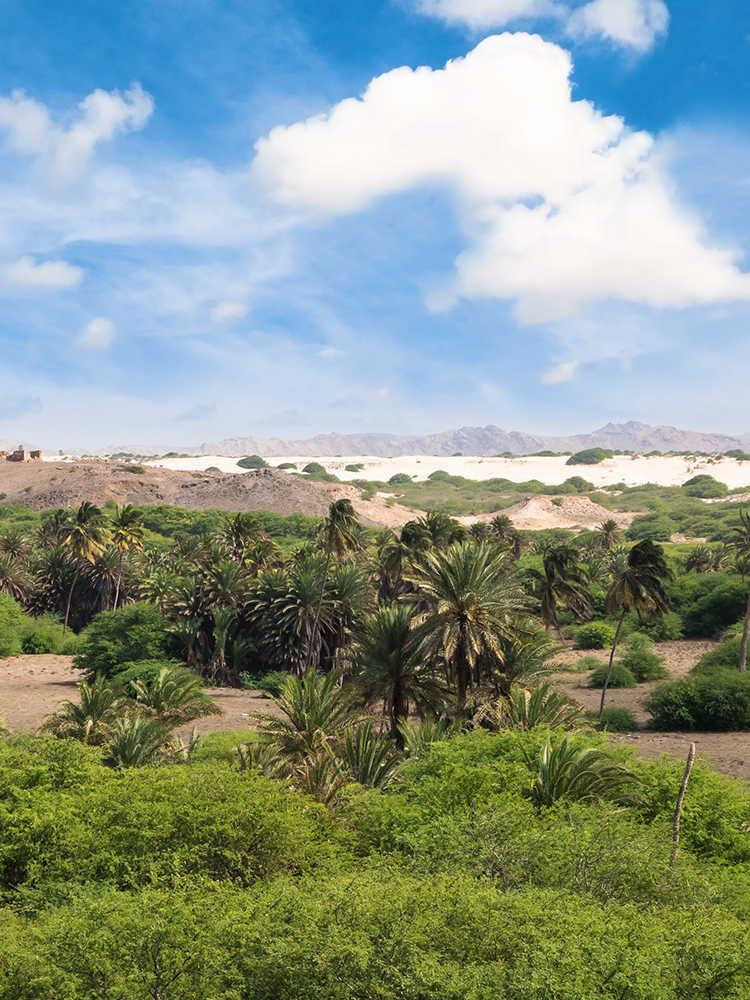 arenas de cabo verde oasis de viana