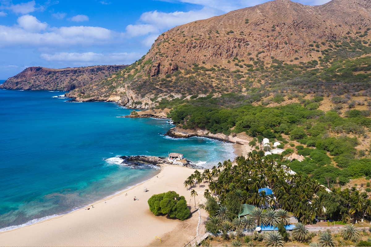 playas de sotavento palmeras