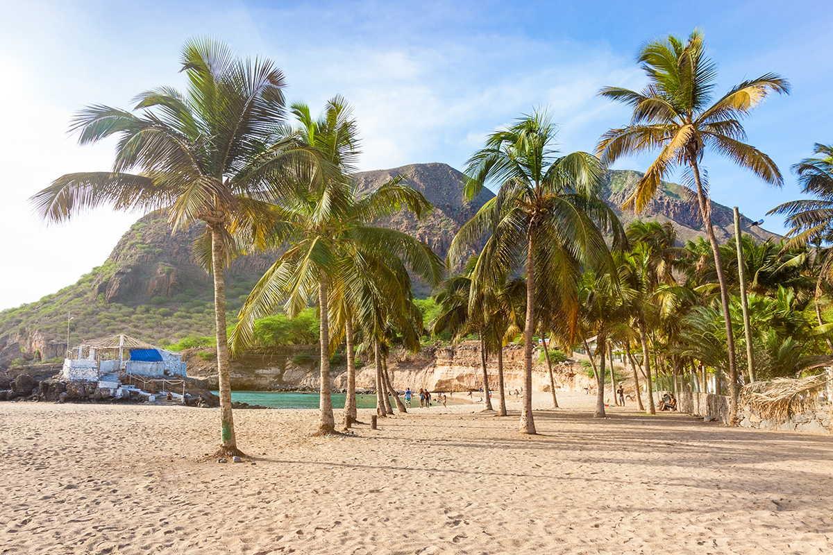 playas de sotavento palmeras y arena