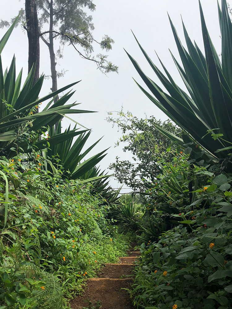 Monte Velha en Cabo Verde